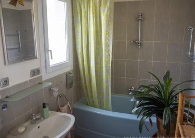 Salle de bain, avec baignoire, lavabo, plante grasse, miroir